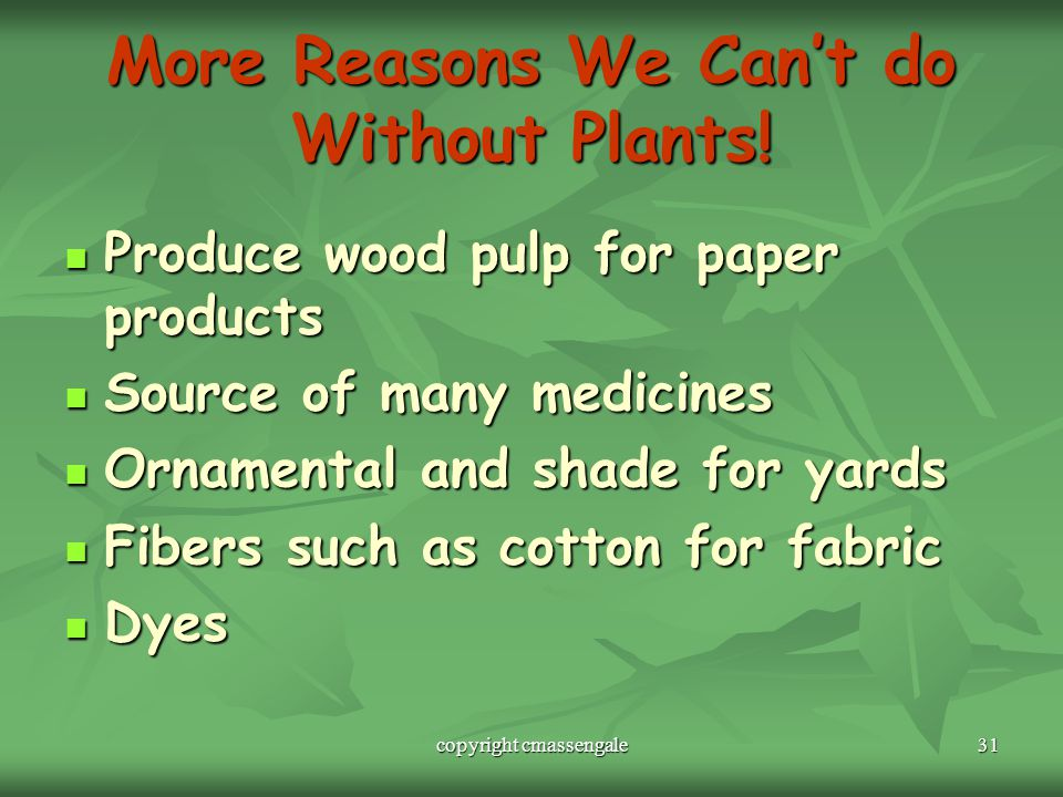 More Reasons We Can't do Without Plants!