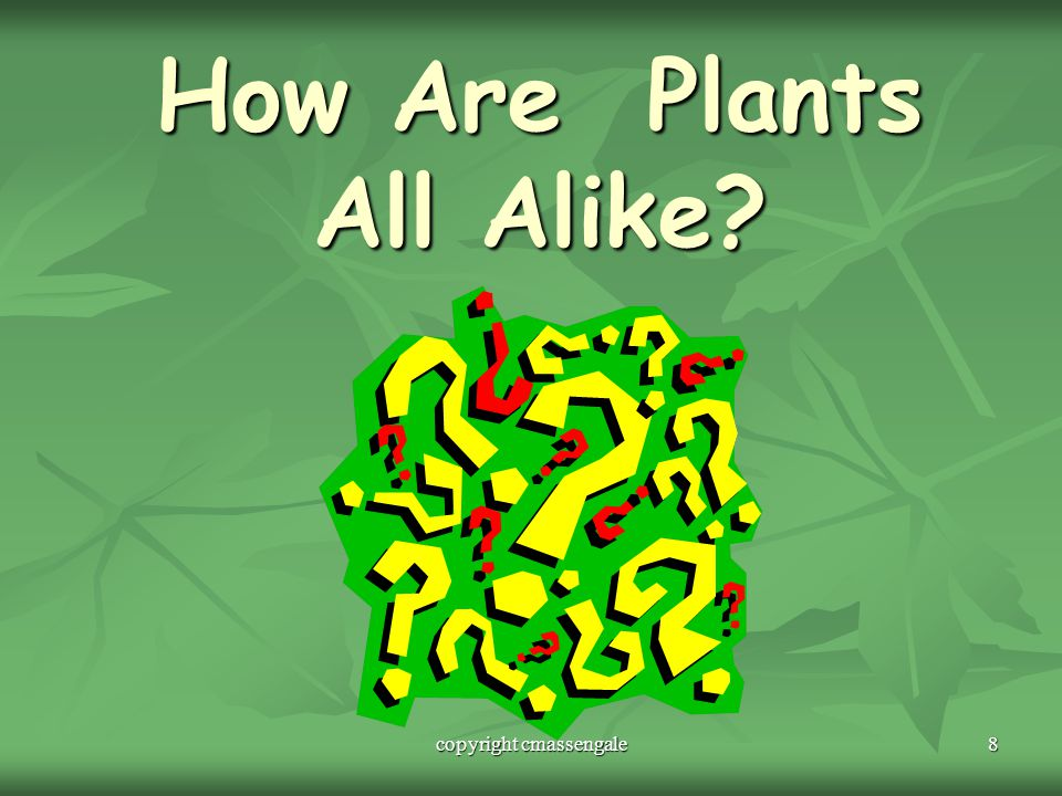 How Are Plants All Alike
