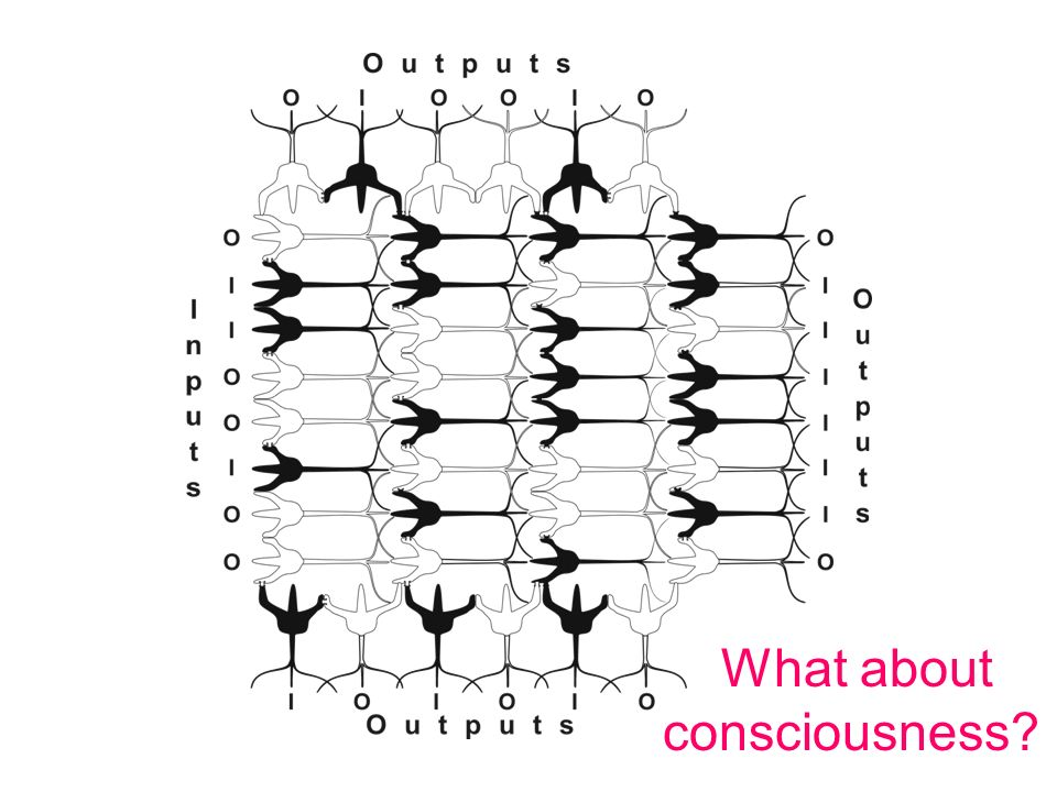What about consciousness