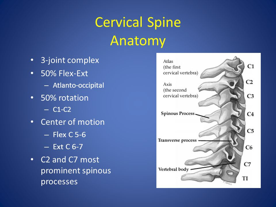 Cervical Spine Arthur Jason De Luigi, DO - ppt download