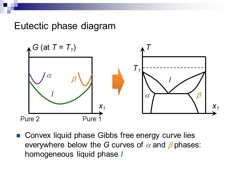 Mseg 803 equilibria in material systems 12 solution theory ppt eutectic phase diagram ccuart Image collections