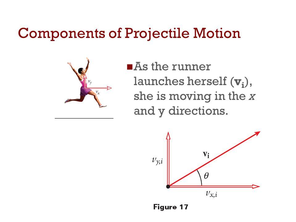 Components of Projectile Motion