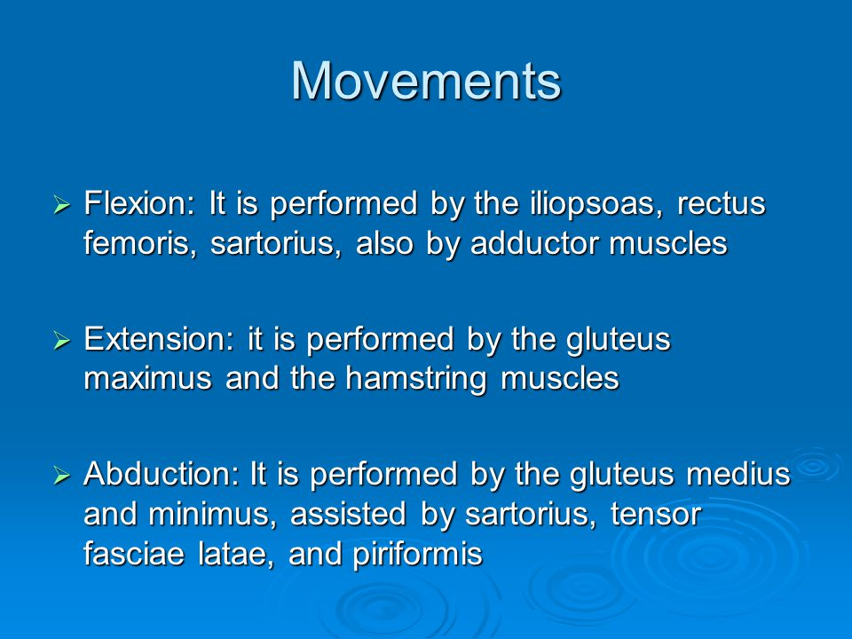 Movements Flexion: It is performed by the iliopsoas, rectus femoris, sartorius, also by adductor muscles.