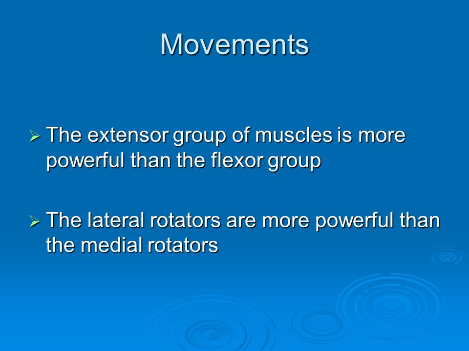 Movements The extensor group of muscles is more powerful than the flexor group.