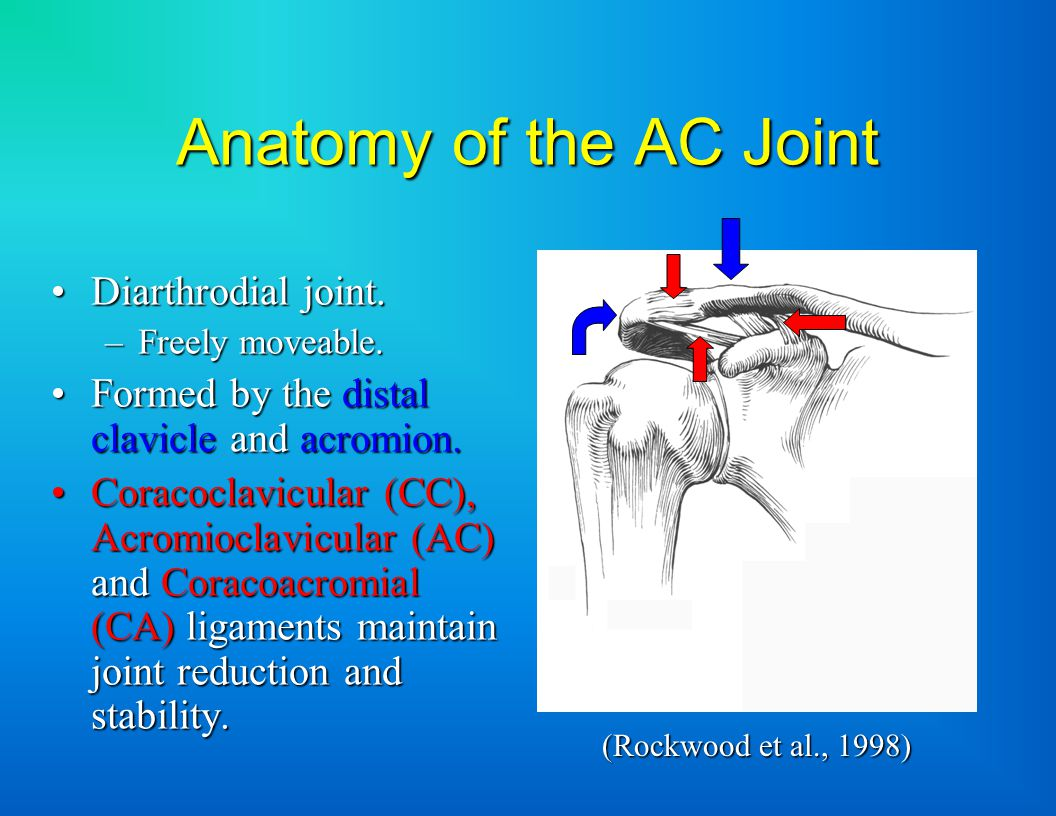 Acromioclavicular Separations: Etiology & Treatment - ppt video ...