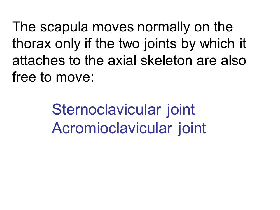 Sternoclavicular joint Acromioclavicular joint