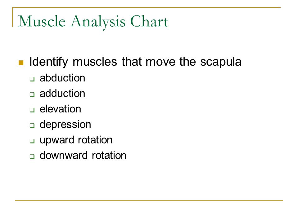 Muscle Analysis Chart Identify muscles that move the scapula abduction