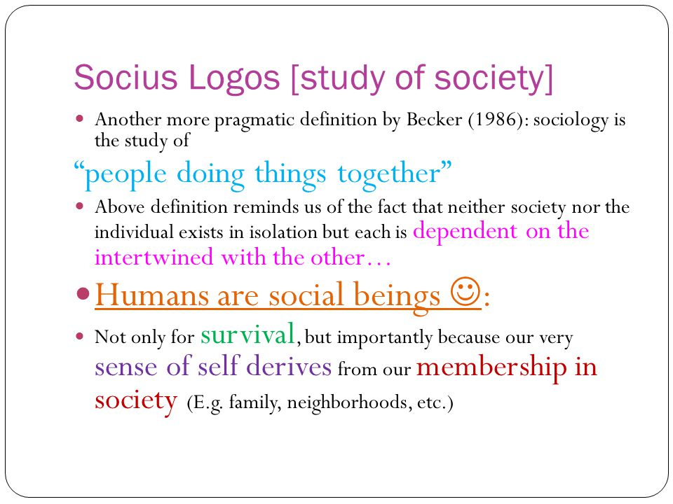more sociology definition