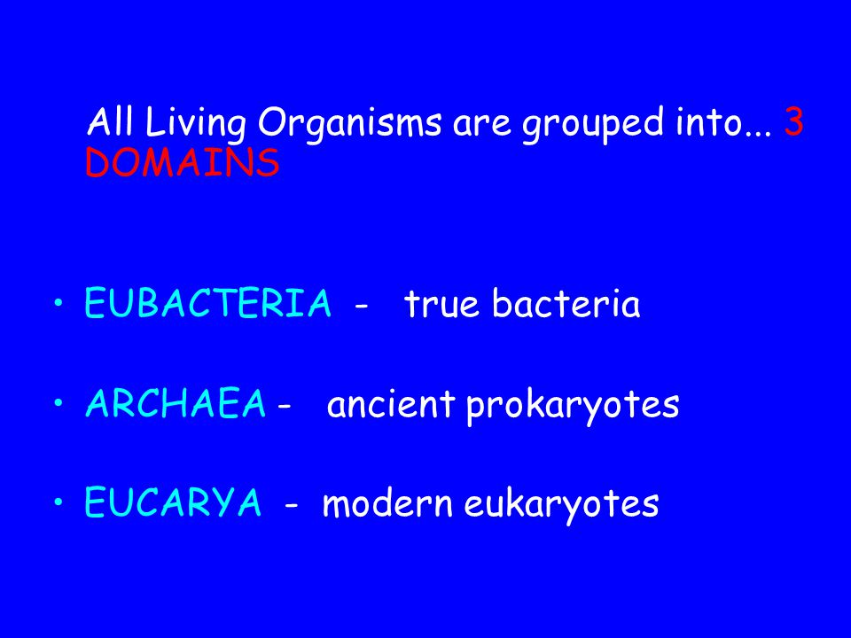 All Living Organisms are grouped into... 3 DOMAINS