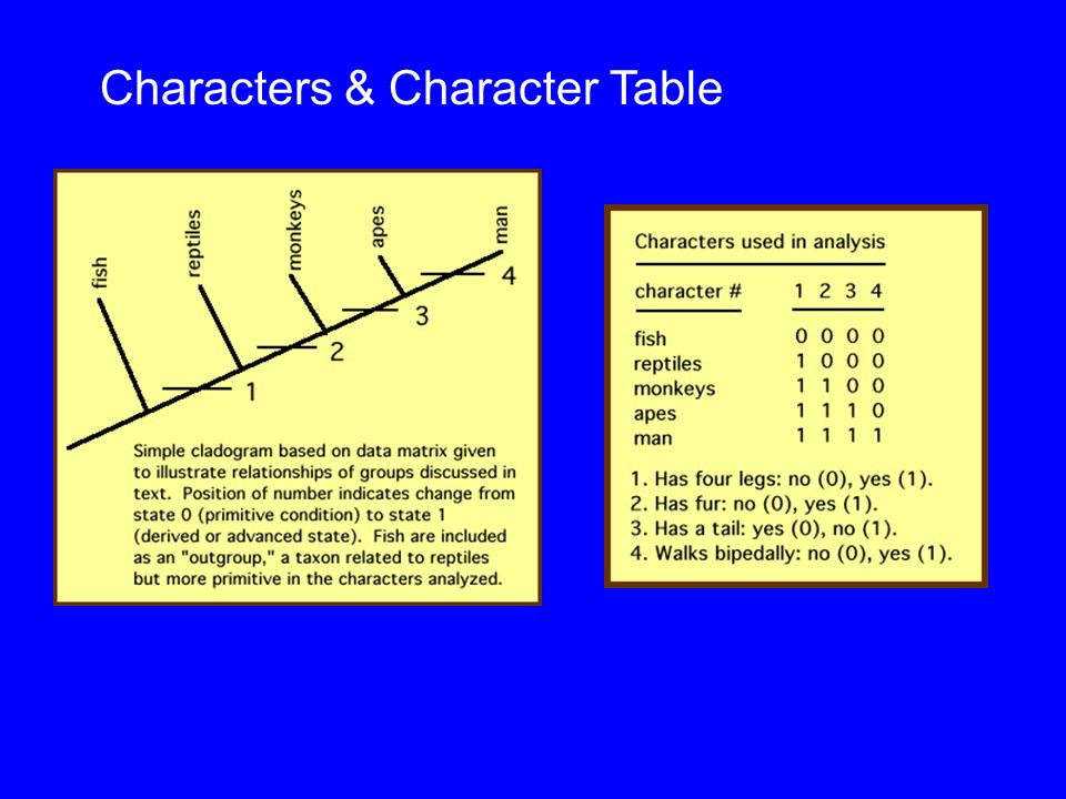 Characters & Character Table