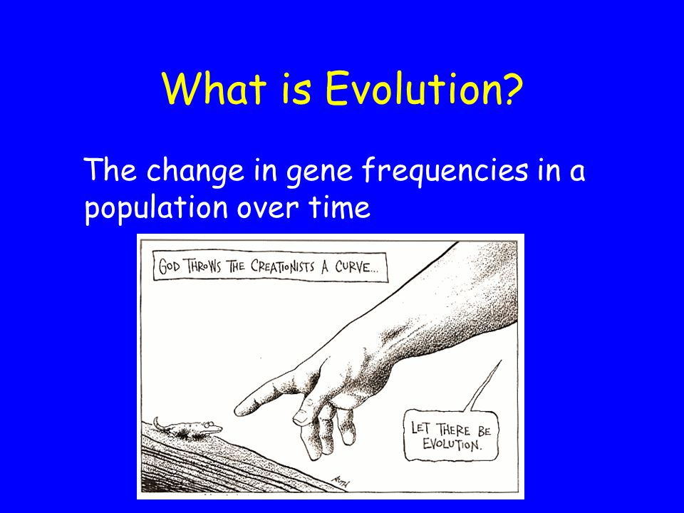 What is Evolution The change in gene frequencies in a population over time