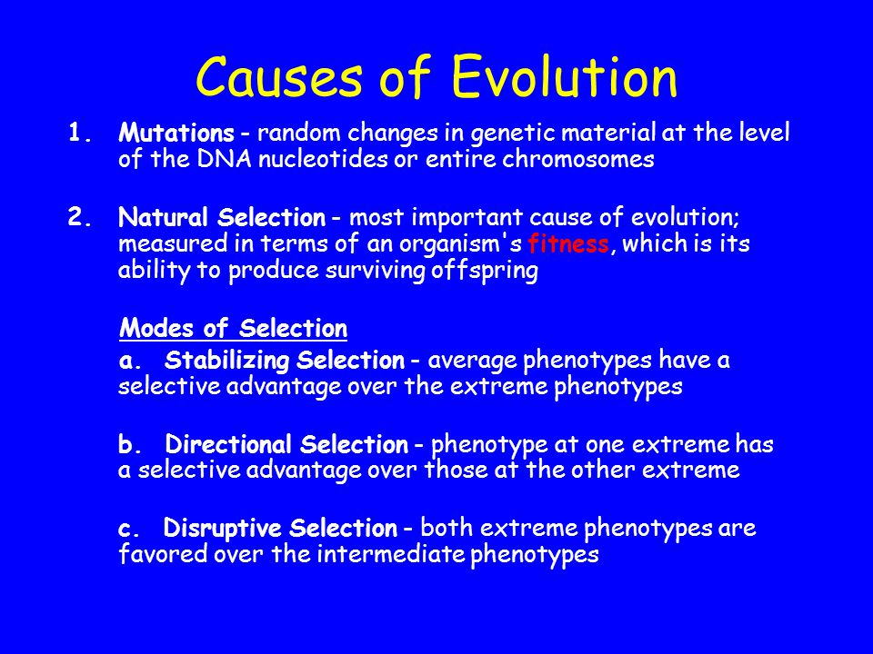 Causes of Evolution Mutations - random changes in genetic material at the level of the DNA nucleotides or entire chromosomes.