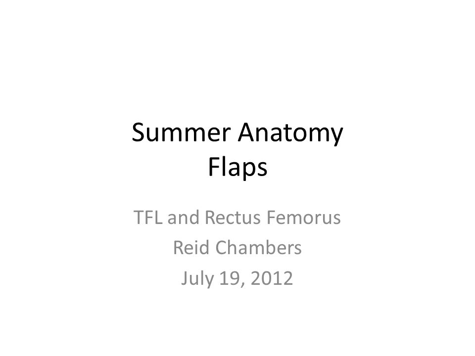 TFL and Rectus Femorus Reid Chambers July 19, 2012