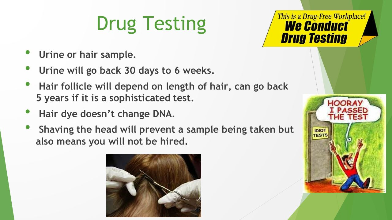 Drug Testing Urine or hair sample.