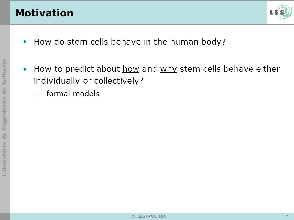 Motivation How do stem cells behave in the human body