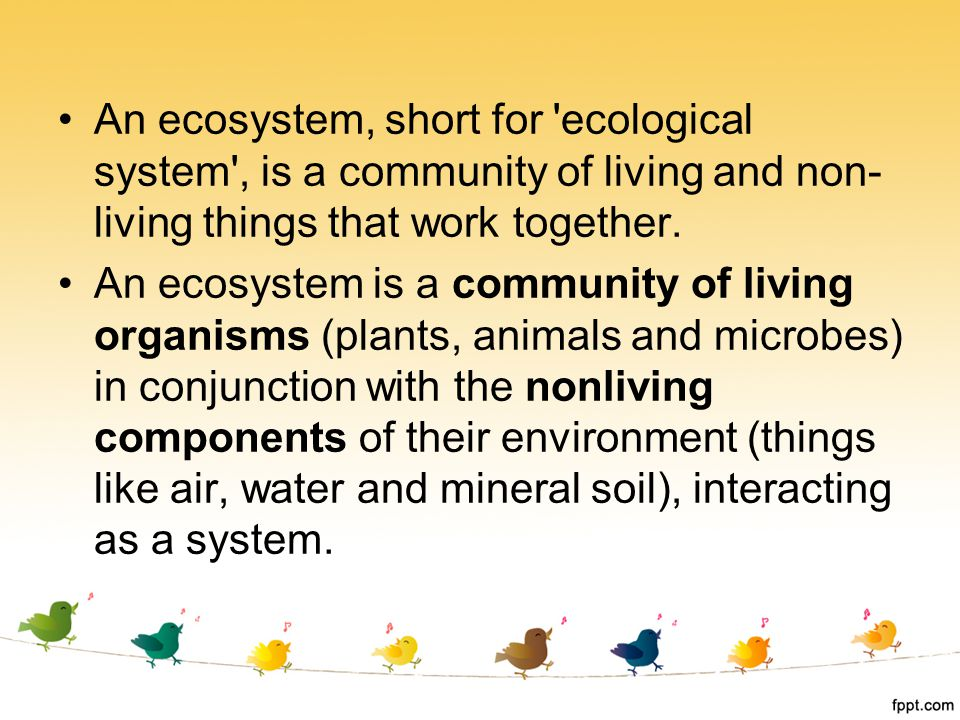 An ecosystem, short for ecological system , is a community of living and non-living things that work together.