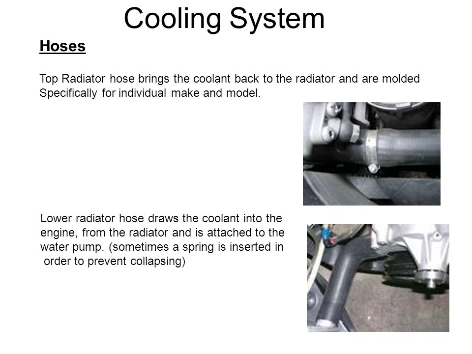 Cooling System Hoses. Top Radiator hose brings the coolant back to the radiator and are molded. Specifically for individual make and model.