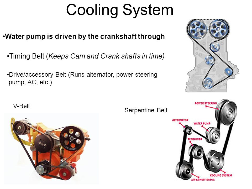 Cooling System Water pump is driven by the crankshaft through