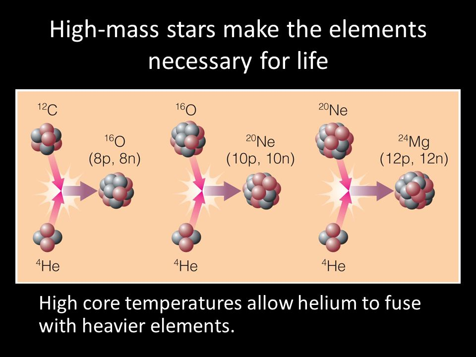 High-mass stars make the elements necessary for life