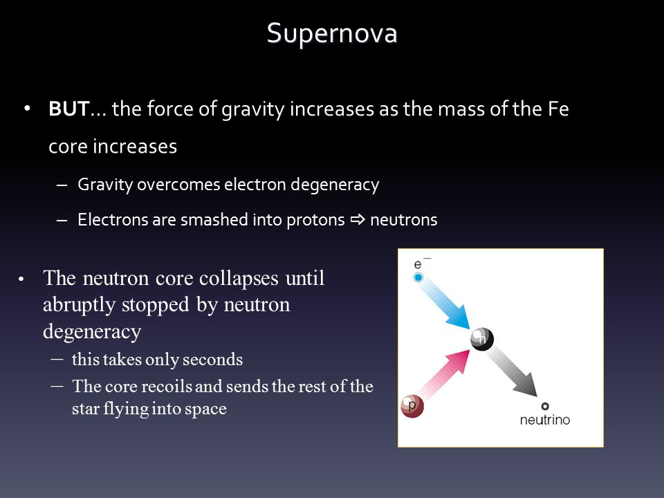 Supernova BUT… the force of gravity increases as the mass of the Fe core increases. Gravity overcomes electron degeneracy.