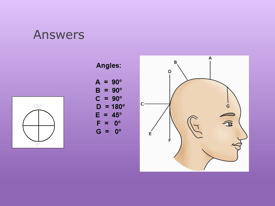 180 Degree Angle Haircut Diagram Wiring Diagram Electricity