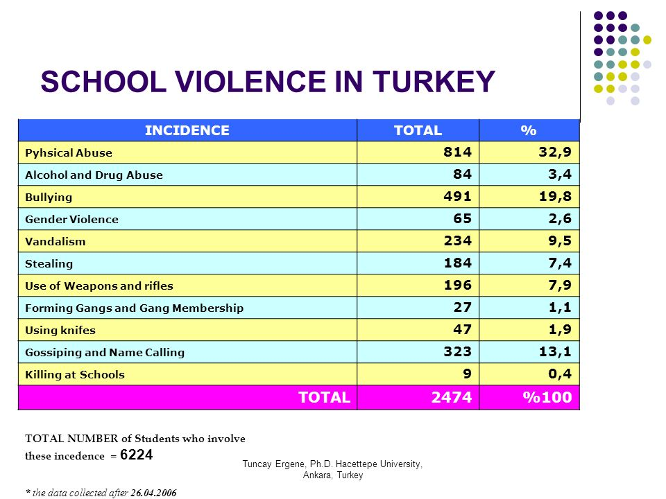 SCHOOL VIOLENCE IN TURKEY