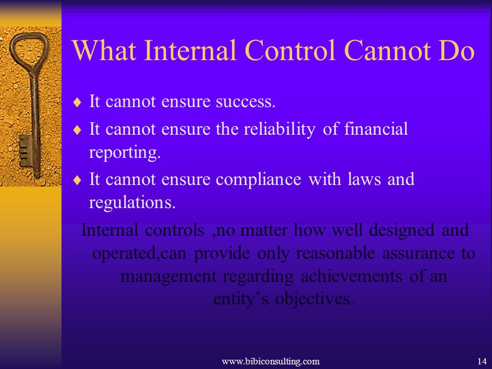 What Internal Control Cannot Do