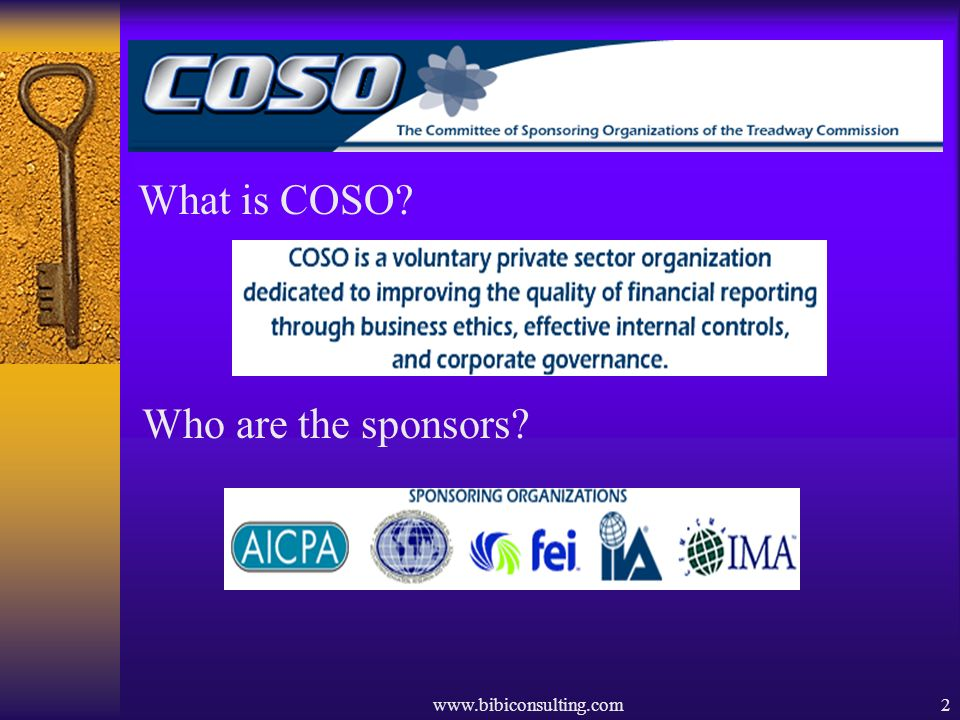 What is COSO Who are the sponsors www.bibiconsulting.com
