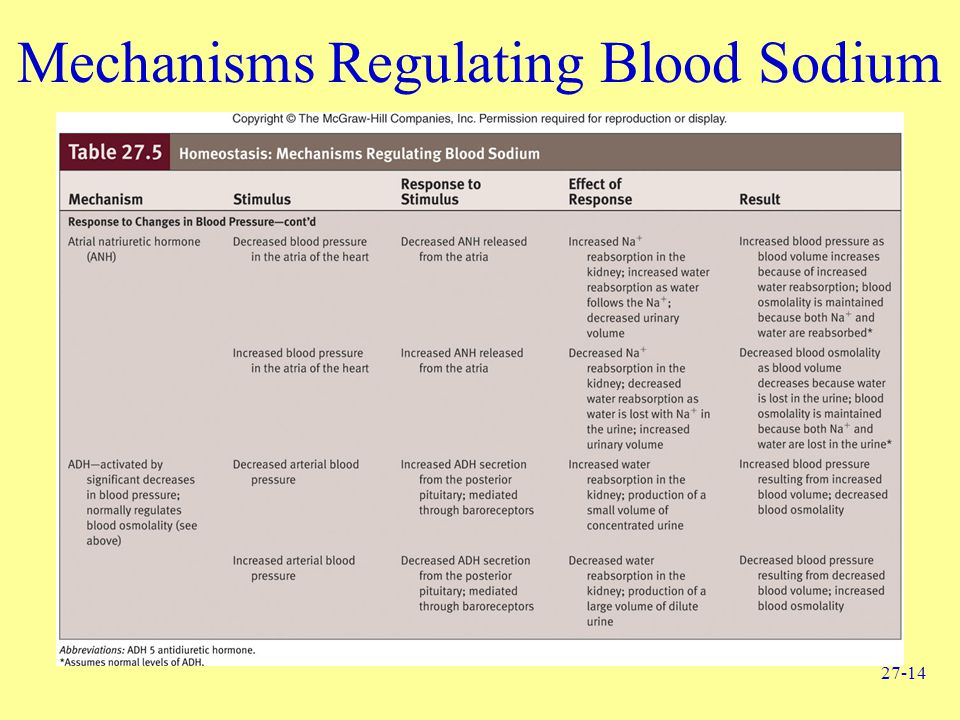 Mechanisms Regulating Blood Sodium
