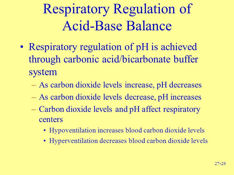 Respiratory Regulation of Acid-Base Balance