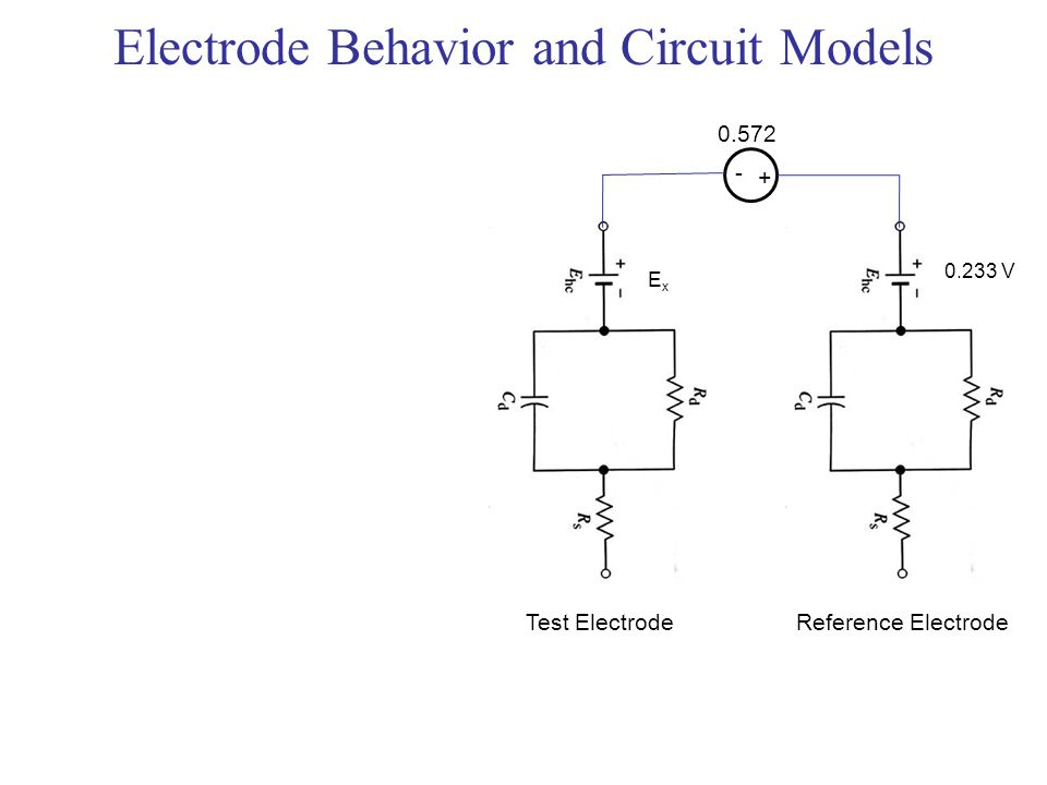 Circuit Model Of An Electrode Trusted Wiring Diagrams