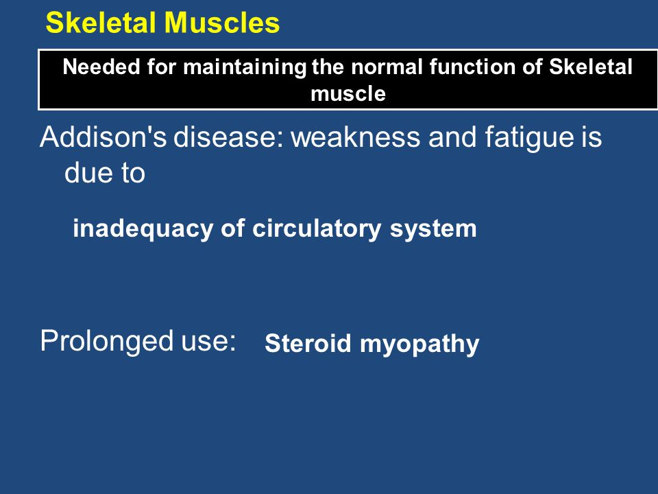 Needed for maintaining the normal function of Skeletal muscle