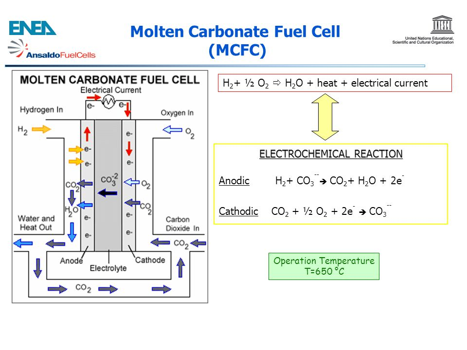 Molten Carbonate Fuel Cell (MCFC)
