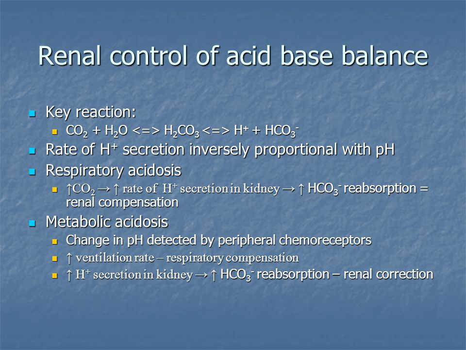 Renal control of acid base balance