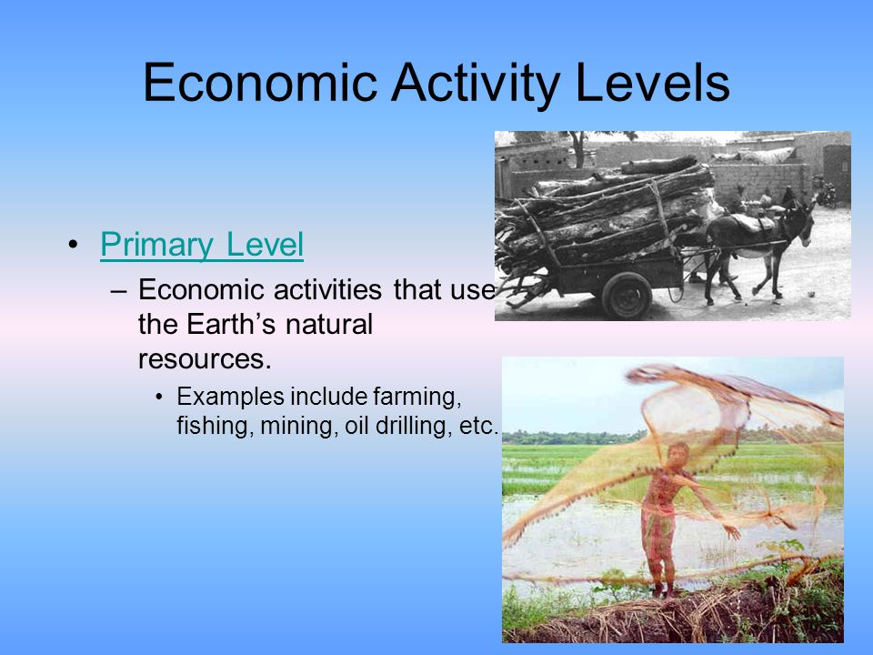 Economic Activity Levels Ppt Video Online Download