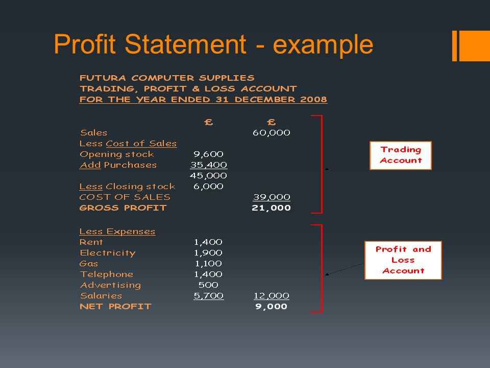 Profit Statement - example