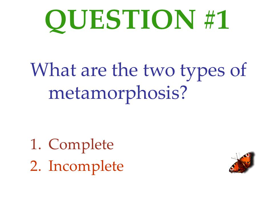 QUESTION #1 What are the two types of metamorphosis Complete