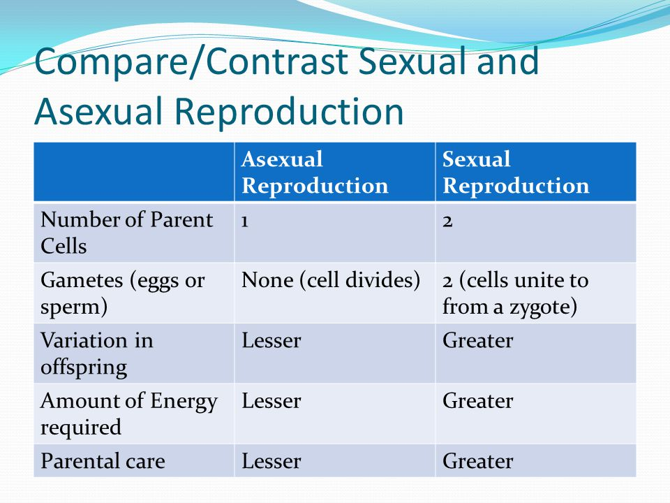 Compare and contrast sexual and.asexual reproduction photo 92