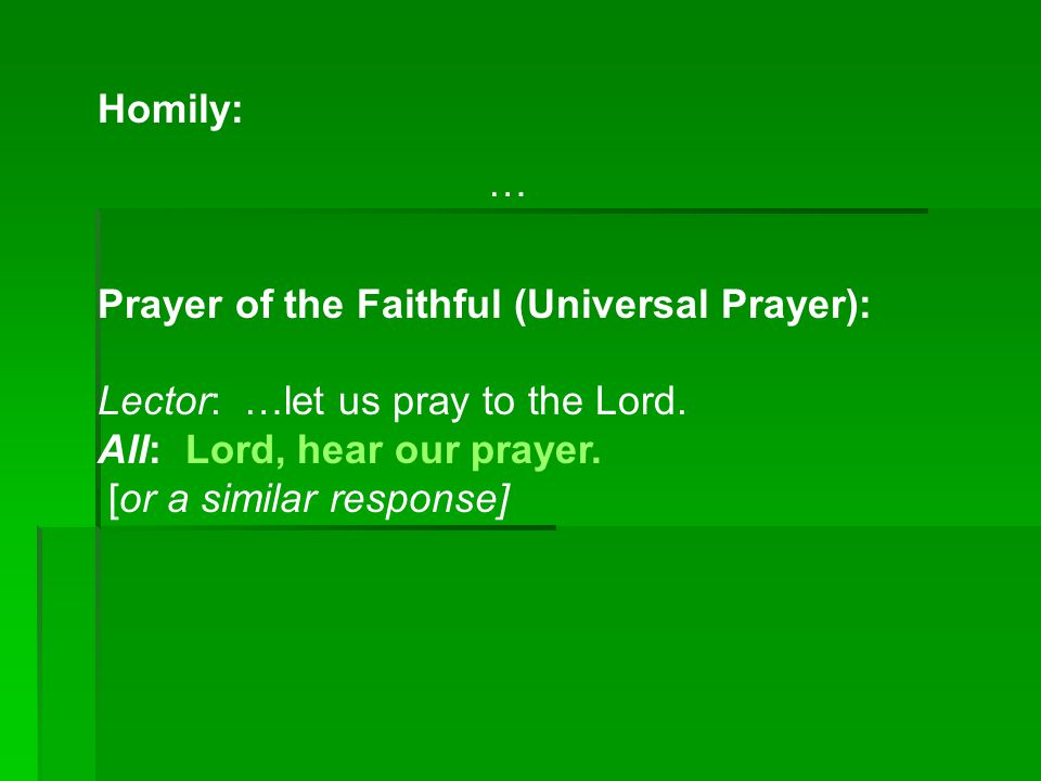 Homily: … Prayer of the Faithful (Universal Prayer): Lector: …let us pray to the Lord. All: Lord, hear our prayer.