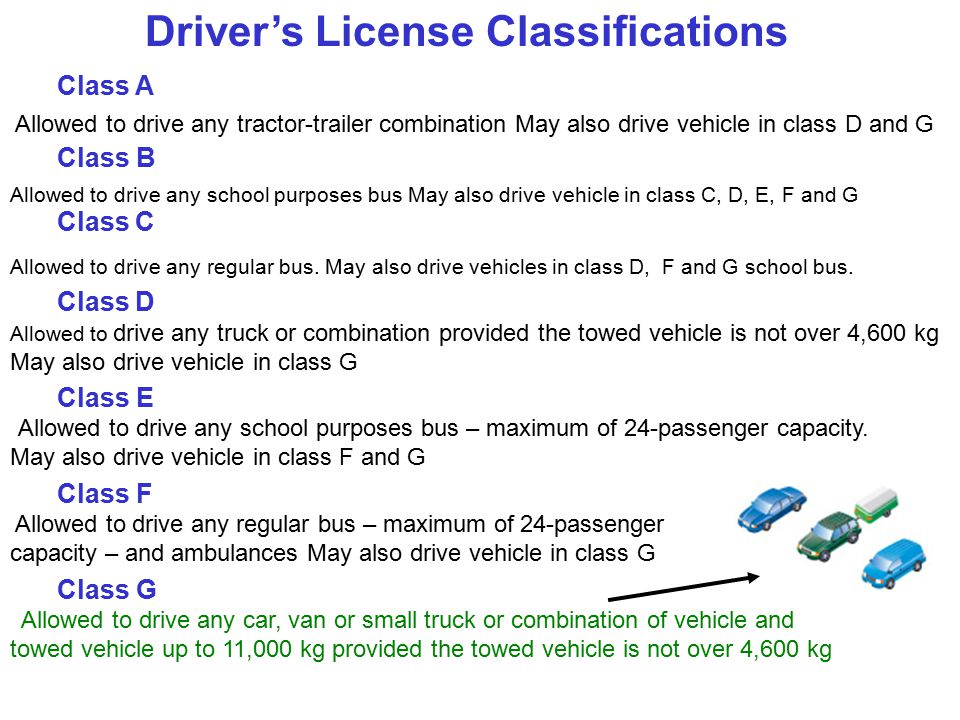 traffic laws and regulations - ppt download