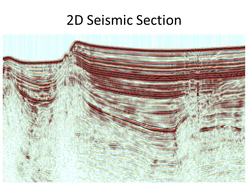 2D Seismic Section