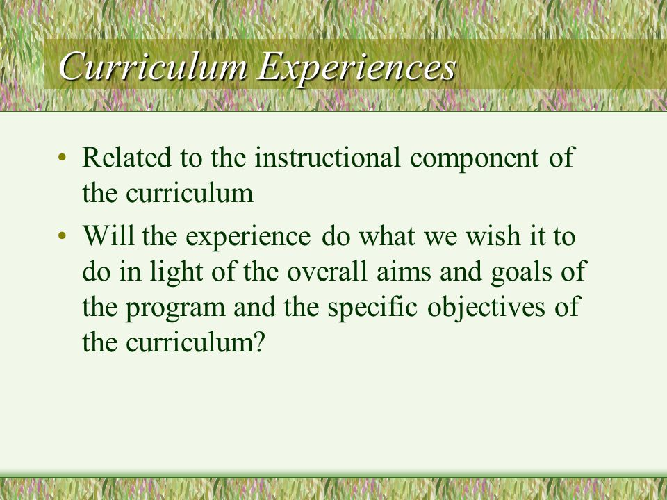 Curriculum Experiences