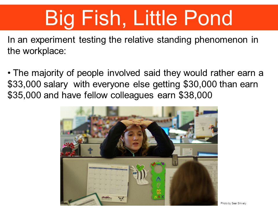 Big Fish, Little Pond In an experiment testing the relative standing phenomenon in the workplace: