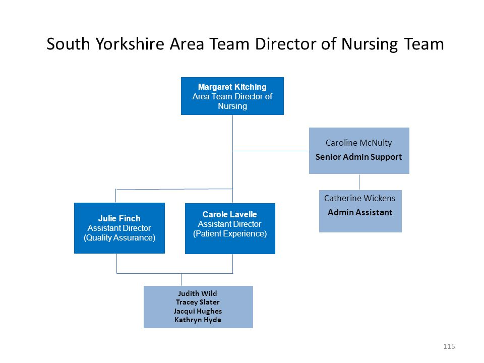 South Yorkshire Area Team Director of Nursing Team