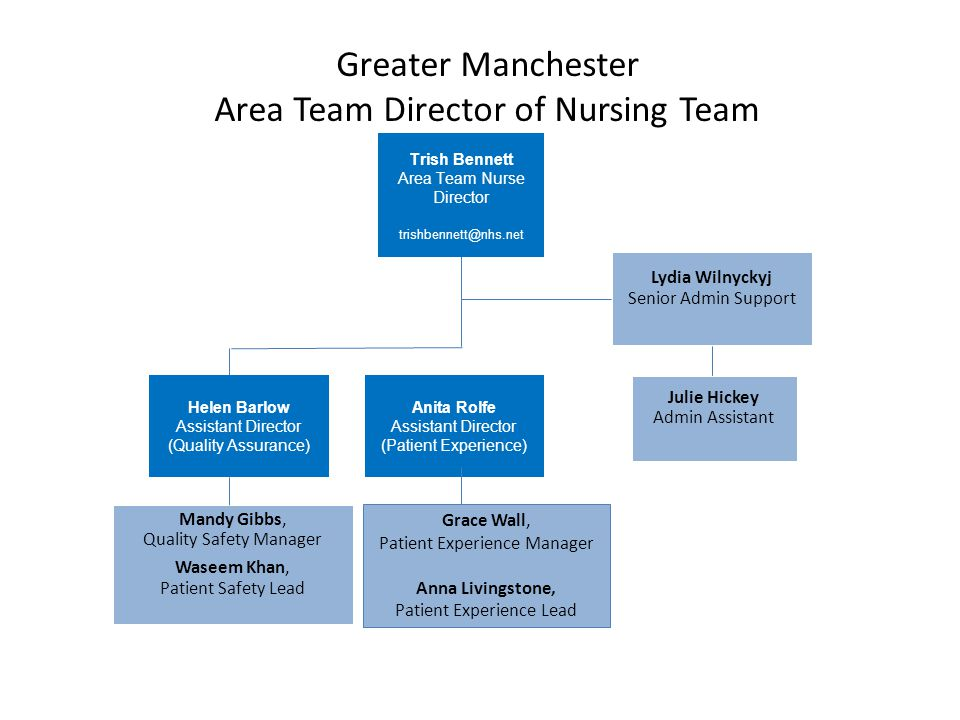 Greater Manchester Area Team Director of Nursing Team