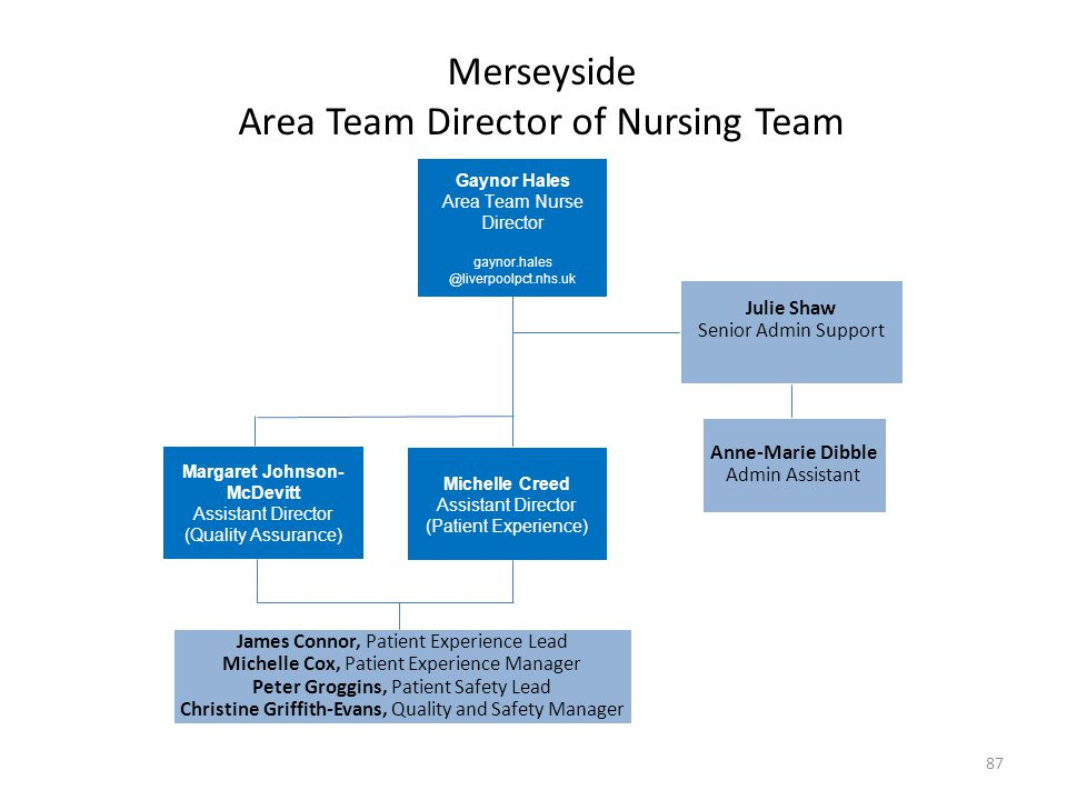 Merseyside Area Team Director of Nursing Team