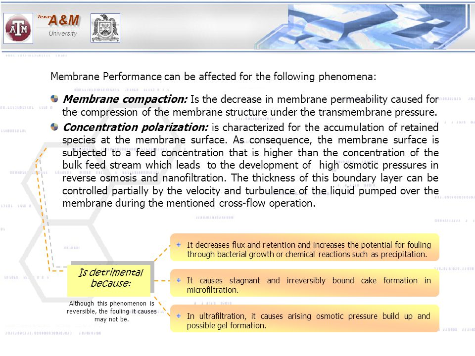 Membrane Performance can be affected for the following phenomena:
