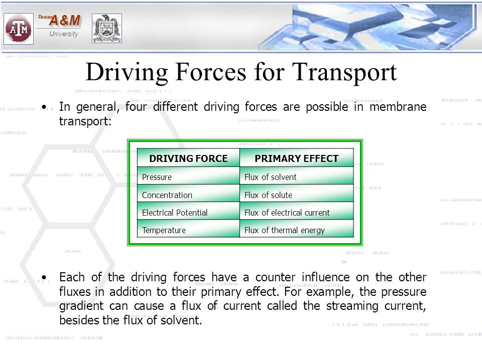 Driving Forces for Transport