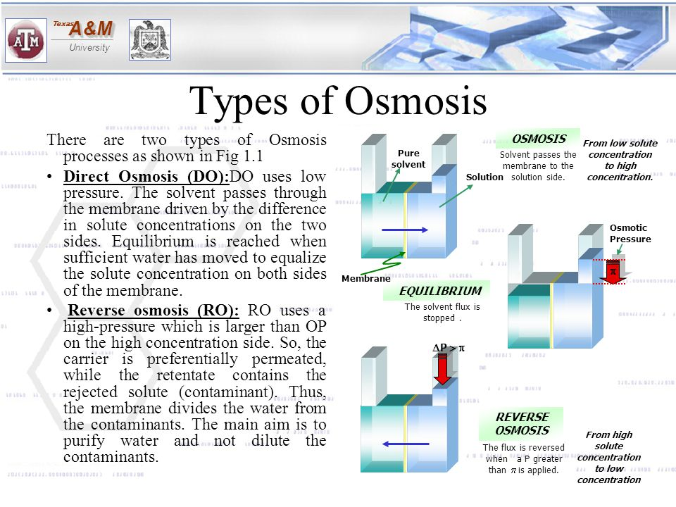 Types of Osmosis There are two types of Osmosis processes as shown in Fig 1.1.