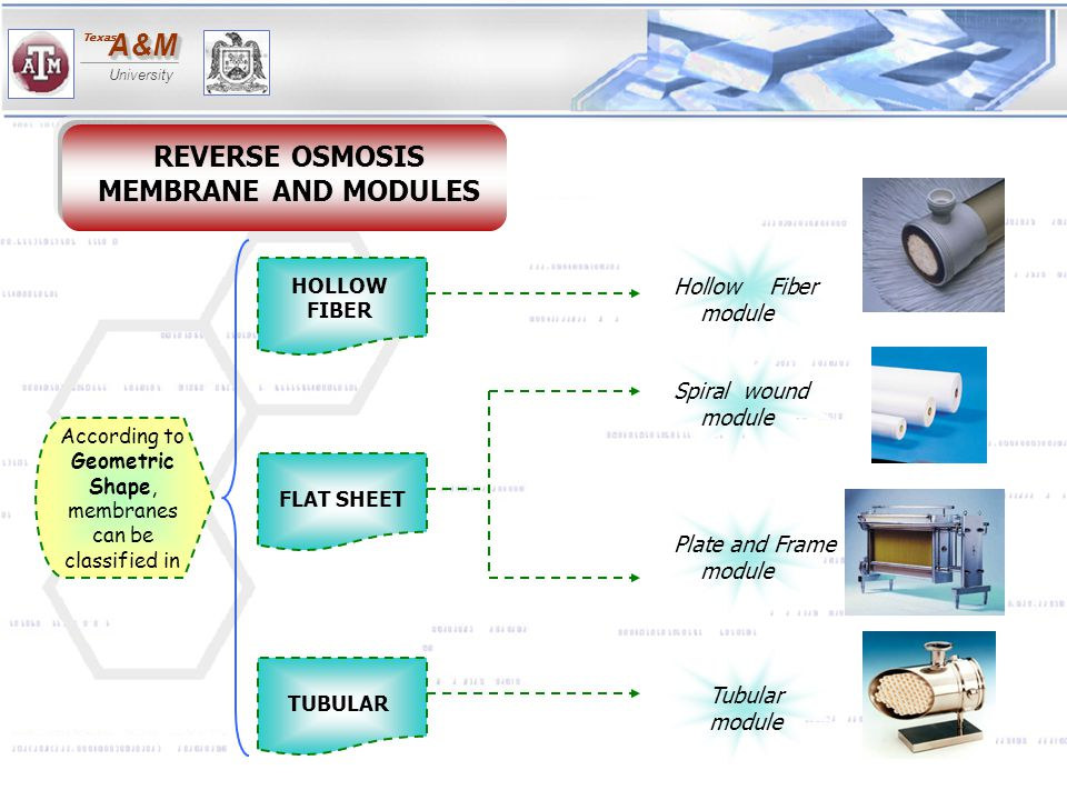 REVERSE OSMOSIS MEMBRANE AND MODULES